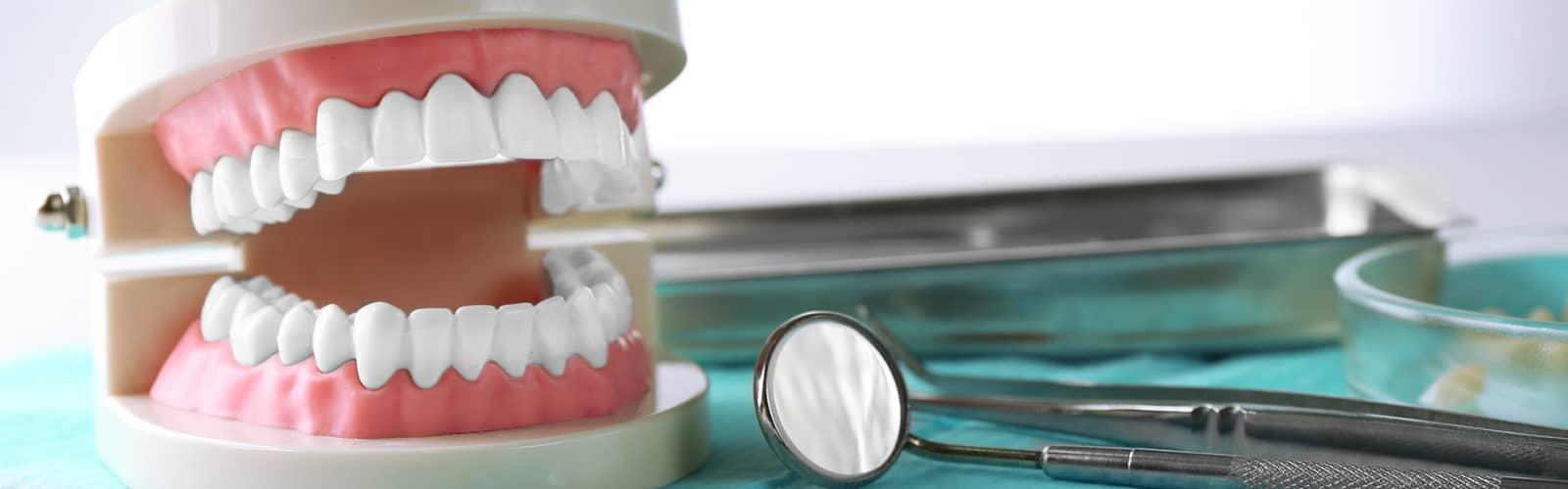 En tandprotes med andra tandverktyg